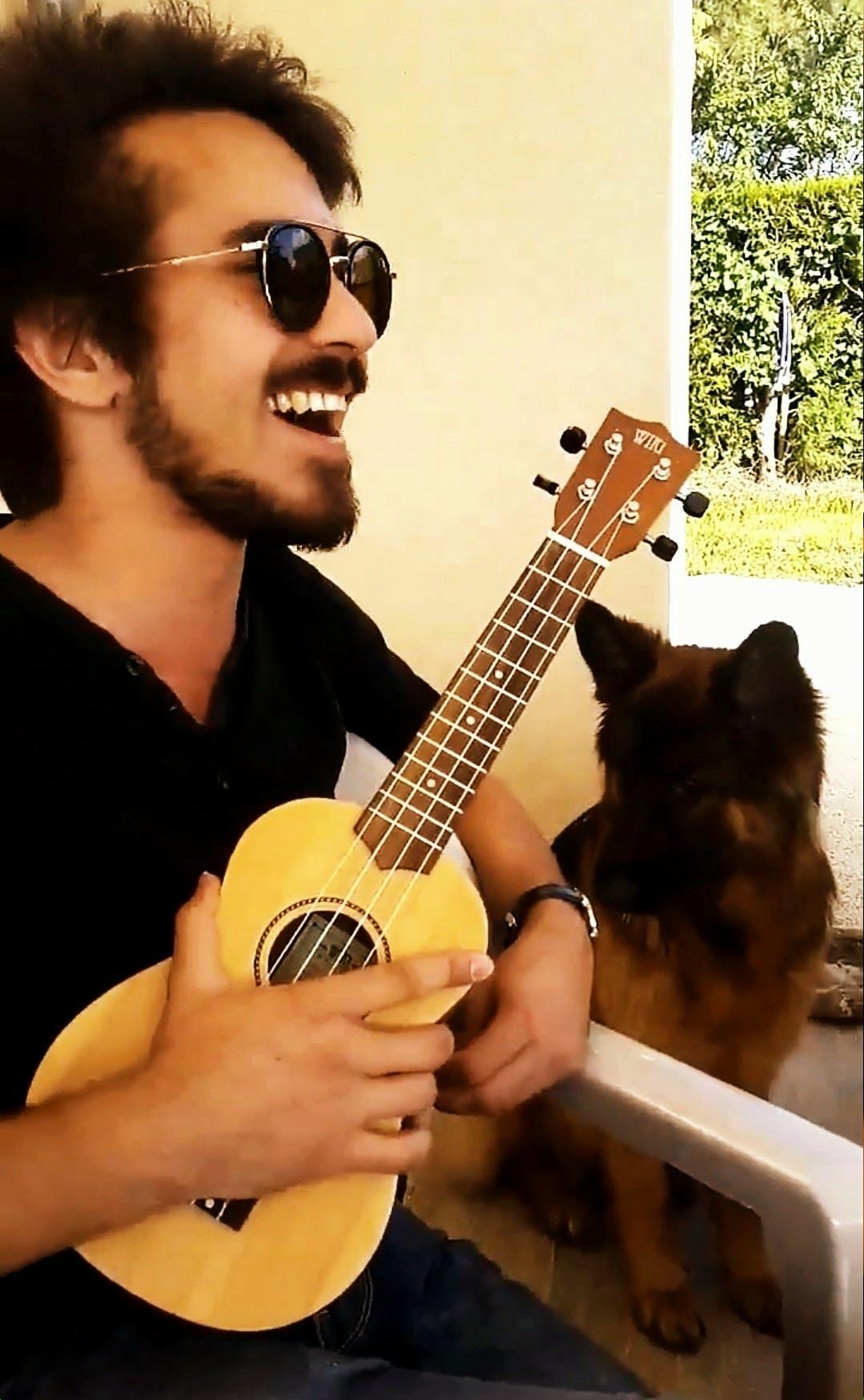 Cours de Théorie de la Musique, Guitare Basse, Guitare à Plaisir, France